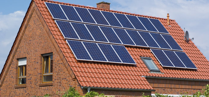 Solar proofing Bury Pest Control